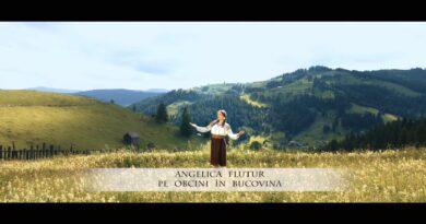 Angelica Flutur - Pe obcini in Bucovina Versuri